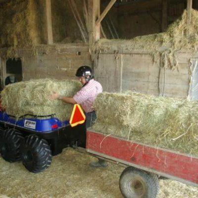 Farming (6)