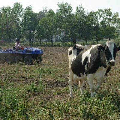 Farming (9)